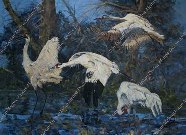 oil painting of whooping crane at night standing in water by DeAnn Melton